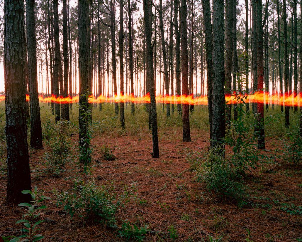 Jeremy Chandler. Pines Fire Horizon, 2016