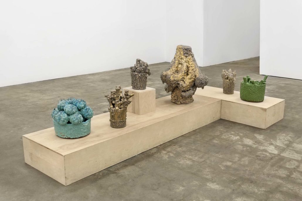 David Hicks: Clippings and Hard Fruit