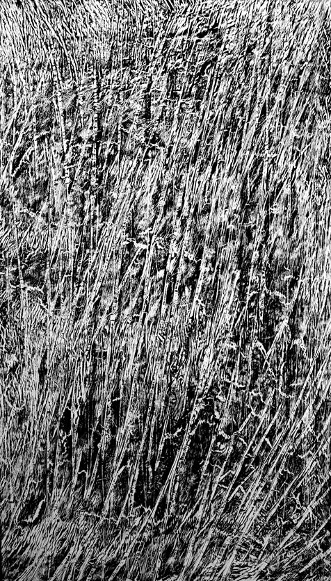 Roberto Gomez Untitled, 2016 Black printing ink on latex 5.8' x 10'